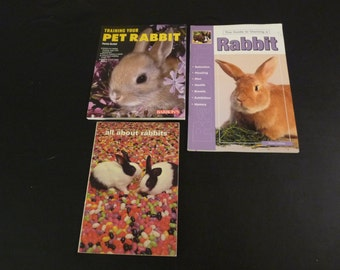 Pet Rabbit Bunny Books Book Lot with Bonus Book!