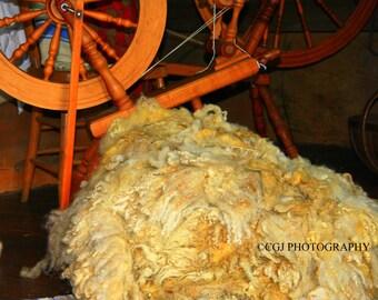 Spinning wheel, wheel, thread, sewing, wood, sheep wool, sheep