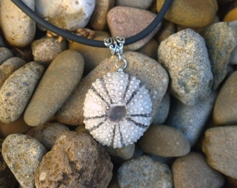 Small sea urchin necklace highlighted in grey under glaze.