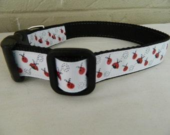 Red Lady Bug Sparkle Dog Collar