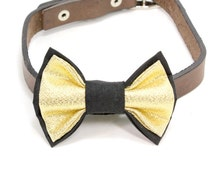 Large Size Gold and Black Dog Bow Tie. Large Size Dog Collar Bow Tie. Big Bow Tie for Dogs. Black Bow Tie. Gold Bow Tie. Collar Bow Tie