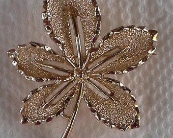 Vintage Sarah Coventry pin/brooch maple leaf in textured gold tone.