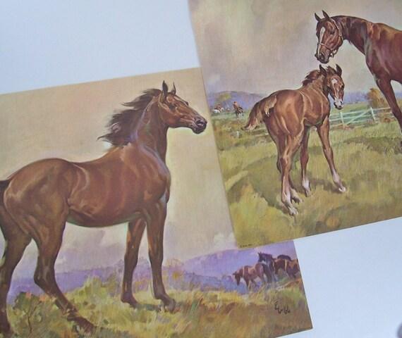 Vintage Horse Prints 1960 S Horse Prints Vintage