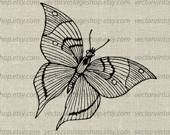 Butterfly Clip Art, Vector Graphic, Instant Download, Spring Winged Insect Clipart, Vintage Illustration, Commercial Use