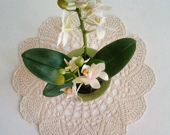 Cream crochet handmade doily No.3