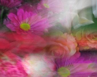 Blurred Floral Blush Print