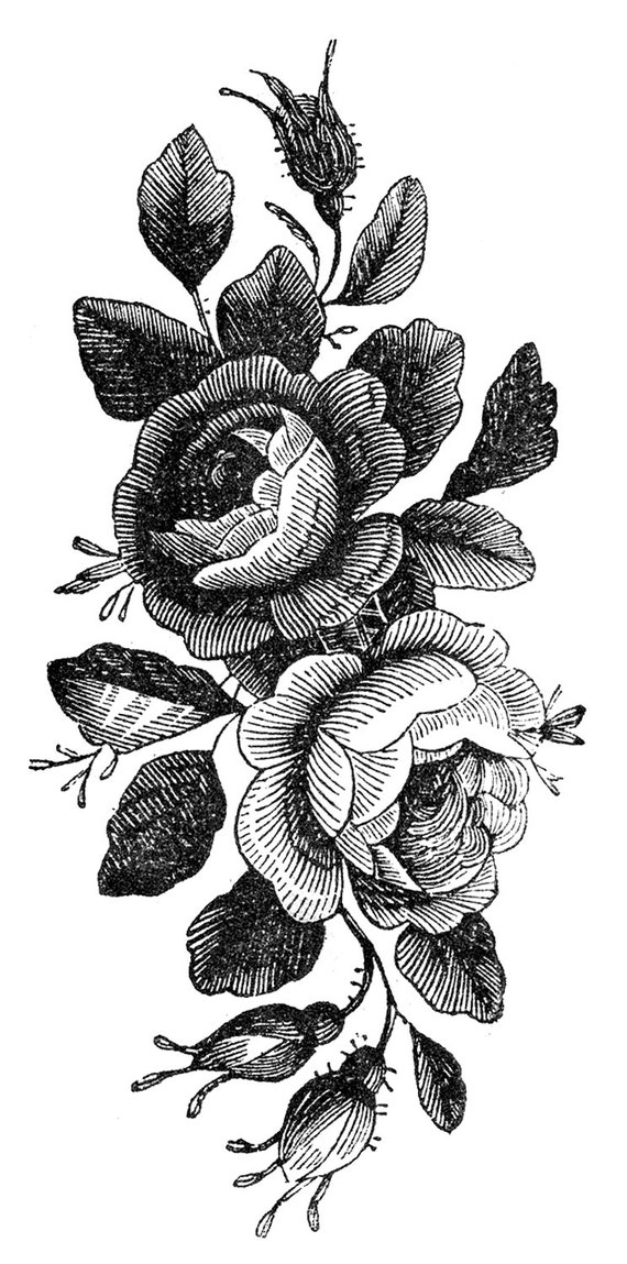vintage roses temporary tattoo. Black Bedroom Furniture Sets. Home Design Ideas