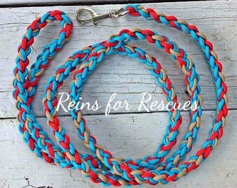 Turquoise, Red & Tan Dog Leash