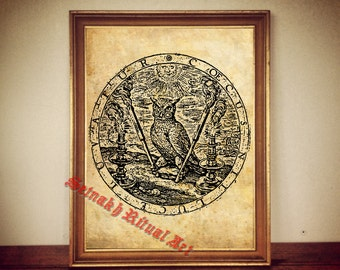 Owl print, Alchemical poster, Occult knowledge, antique paper, canvas, gnostic vision, hermetism #85