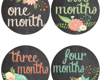Chalkboard Baby Milestone Stickers - Flower Onesie Stickers - Baby Belly Stickers - First Year Stickers (471)