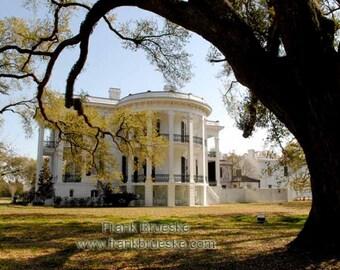Nottoway Plantation Home, Plantation Homes, Louisiana Plantations, Fine Art Plantations, Frank Brueske