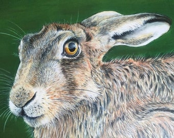 Spring hare limited edition signed print