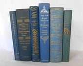 Decorative Blue and Gold Books with Exceptional Content 6 pc. Set