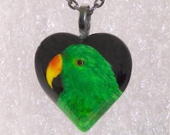 Eclectus Parrot Heart Necklace,Parrot,Animal,Bird,Zoo,Puffy Heart,Glass Pendant,Gunmetal Bail & Necklace -- DSC5722D-HT30-GG