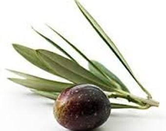Olivem 1000 (4oz)
