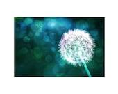 Dandelion Photography Canvas Photo Print ~ Dreamy Bokeh Flower Photography ~ Turquoise Teal Emerald Green Blue ~ Dandelion Dreams ~