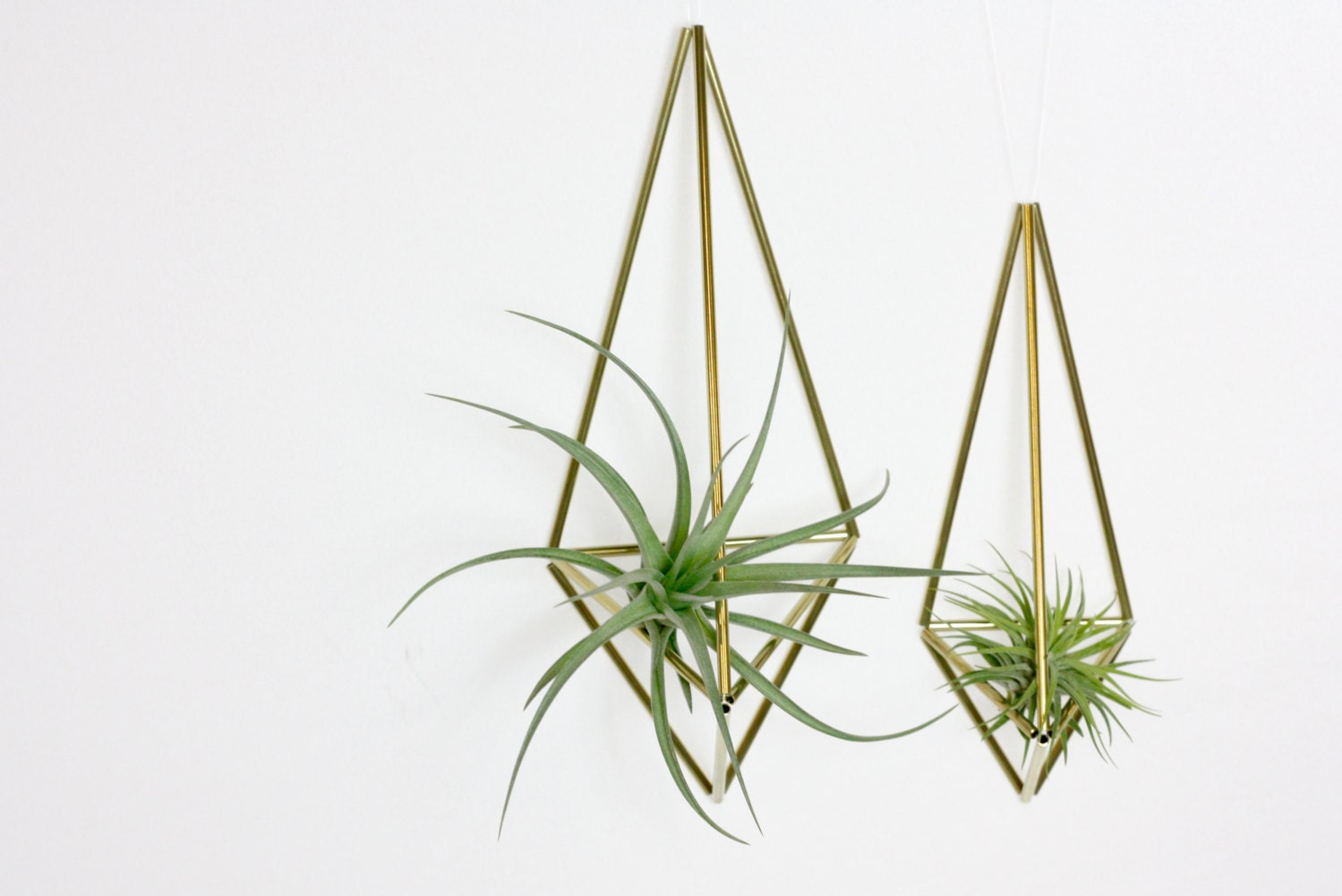 Geometric air plant holder images for Geometric air plant holder