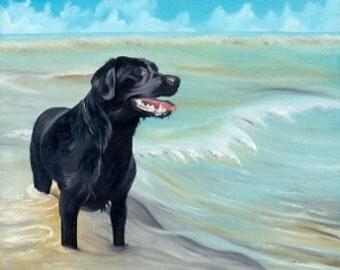 Labrador Heaven