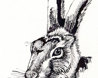 Hare Sketch Greetings Card blank inside