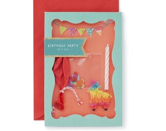 Birthday Party in a Box Card, must see!