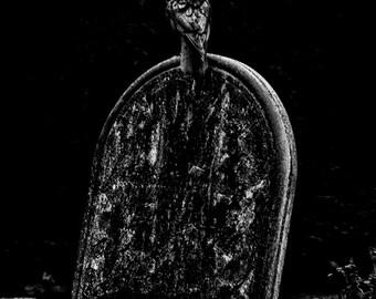 Moloch the Crow. A dark and gothic original fine art photographic giclée print