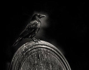 "A Dark and Gothic black and white fine art photographic print of a Crow on a Gravestone. Wall Art  ""Morticia"" one of the graveyard crows."
