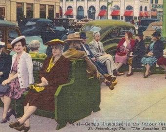 St Saint Petersburg Florida Famous Green Benches Postcard Vintage Antique