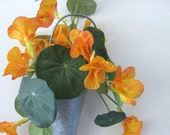 French Country Cottage Decor, Hanging Plant, Floral Arrangement, Orange Flowers, Indoor Garden, Orange Nasturtium, Tin Cone