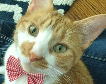 Red and White Gingham Check  Break Away Bowtie Collar for Cats