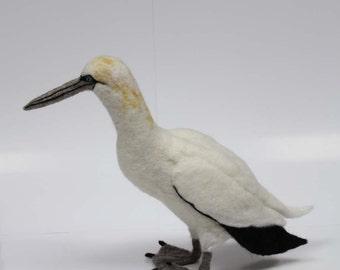 Gannet, needle felted sculpture