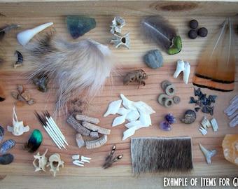 Curiosity Collection Grab Bag - 5 Pieces