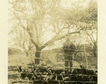 "Vintage Photo ""Forgotten Farmer"" Bird Snapshot Photo Old Antique Photo Black & White Photography Found Photo Paper Ephemera Vernacular - 164"