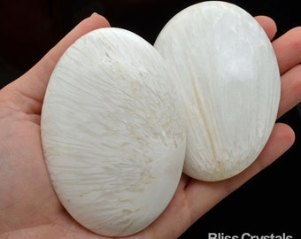 """1 Giant SCOLECITE 3.1"""" Palm Stone White Crystal Stone Polished Natural Healing Crystals and Stones #S1"""
