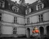 Castle Photograph, Black and White With Color, Orange Home Decor, Pumpkin Art, Autumn Decor, Architecture Art, Still Life Photography, Print