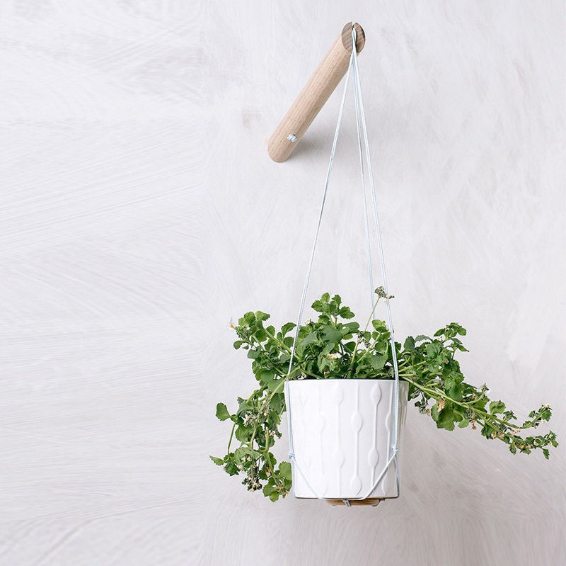 Hanging Light With Planter: Hanging Planter With Light Blue Thread Wall By