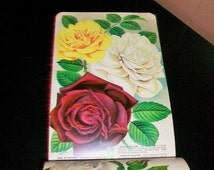 Antique 1890s Garden Nursery Catalog Color Plates Book LL May St Paul Minnesota 76 Pages
