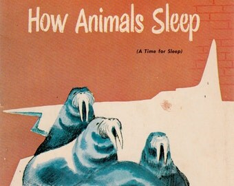 How Animals Sleep by Millicent Selsam, illustrated by Ezra Jack Keats