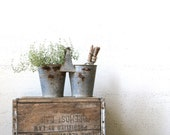 vintage planter. container gardening. metal flower pot. vintage gardening. rustic style. urban vintage. vintage garden. refugeca2015