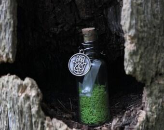 Selene. Mini Glass Terrarium - Real Moss, Selenite Crystal, & Hamsa Charm