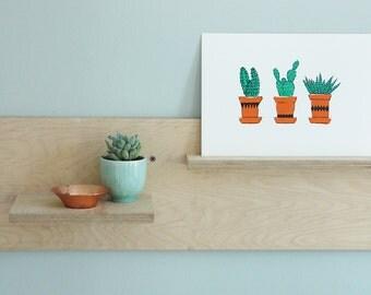 Hand Pulled Screenprint, 'Succulents'