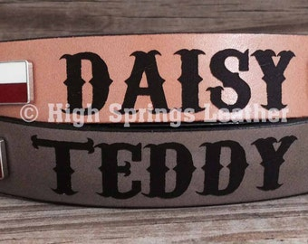Engraved leather dog collar with Texas Flag conchos