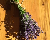 Dried/Partially Dried English Lavender Bundles 100+ stems/Bundle