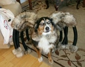 Giant Mutant Spider Dog Costume