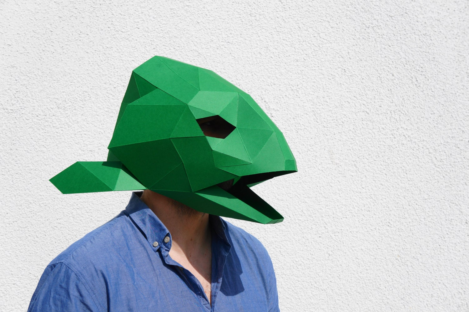 Build your own fish head mask for Fish head mask