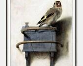 The Goldfinch (Het Puttertje) by Carel Fabritius - 'Little Weller' - Avian Art - Garden Bird Art - Giclee Print - Fine Art Reproduction