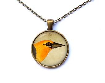 Animal pendant Jay necklace Bird jewelry Art charm CWAO44