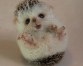 Needlefelted Animal, Hedgehog, special critters, special gift, ready to ship
