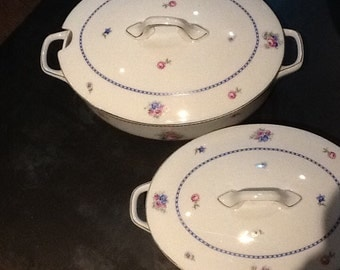 Set of 2 dishes