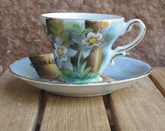 Vintage Norcrest fine china, handpainted Colorado Columbine, cup & saucer-free shipping