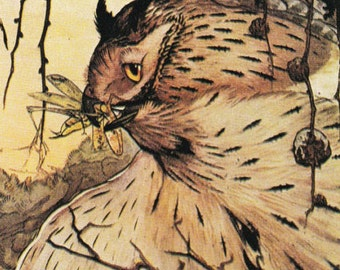 bird print Owl Aesops Fables The Owl and the Grasshopper Victorian illustration Julius Detmold vintage
